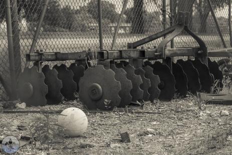 fairgroundpark15